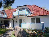 Haus Stranddistel Whg 2 in Zingst (Ostseeheilbad) - kleines Detailbild