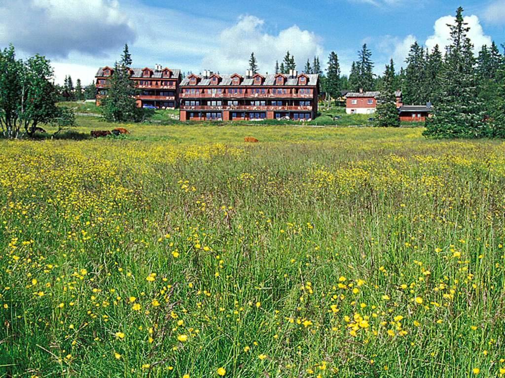 Umgebung von Ferienhaus No. 38605 in Lillehammer