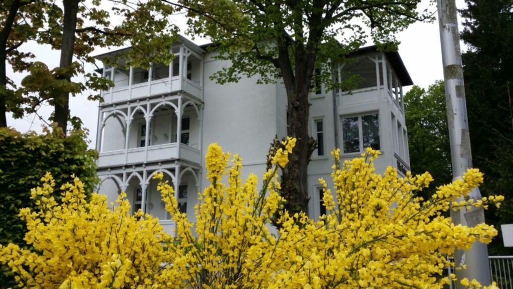 Pension 'Villa Frohsinn' - incl. W-LAN, Parkplat