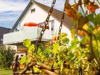 Sonnige ***Fewo mit traumhaftem Meerblick in ruhiger Lage, Fewo 2 in Sassnitz auf Rügen - kleines Detailbild
