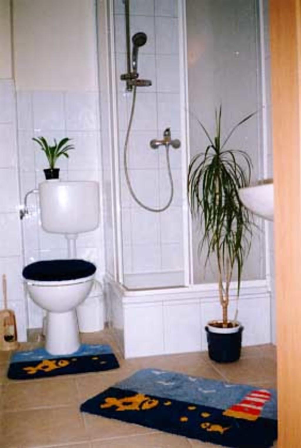 2 Fewo & 1 Appartement in Waren an der M�ritz, App