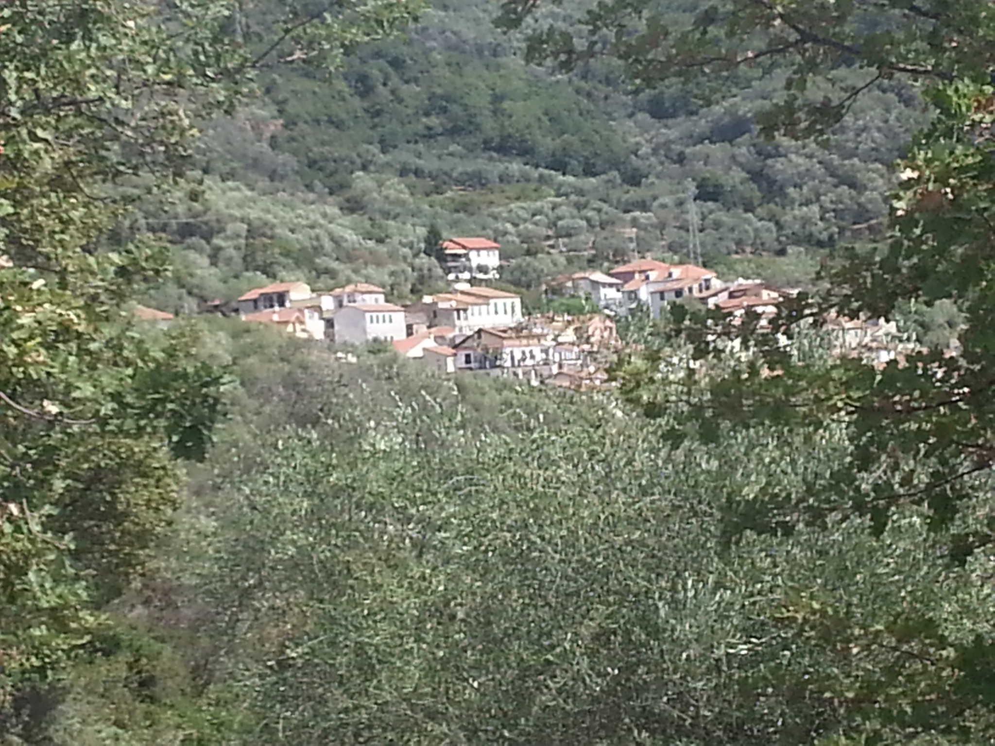 Blickrichtung Nord (Haus ganz links)