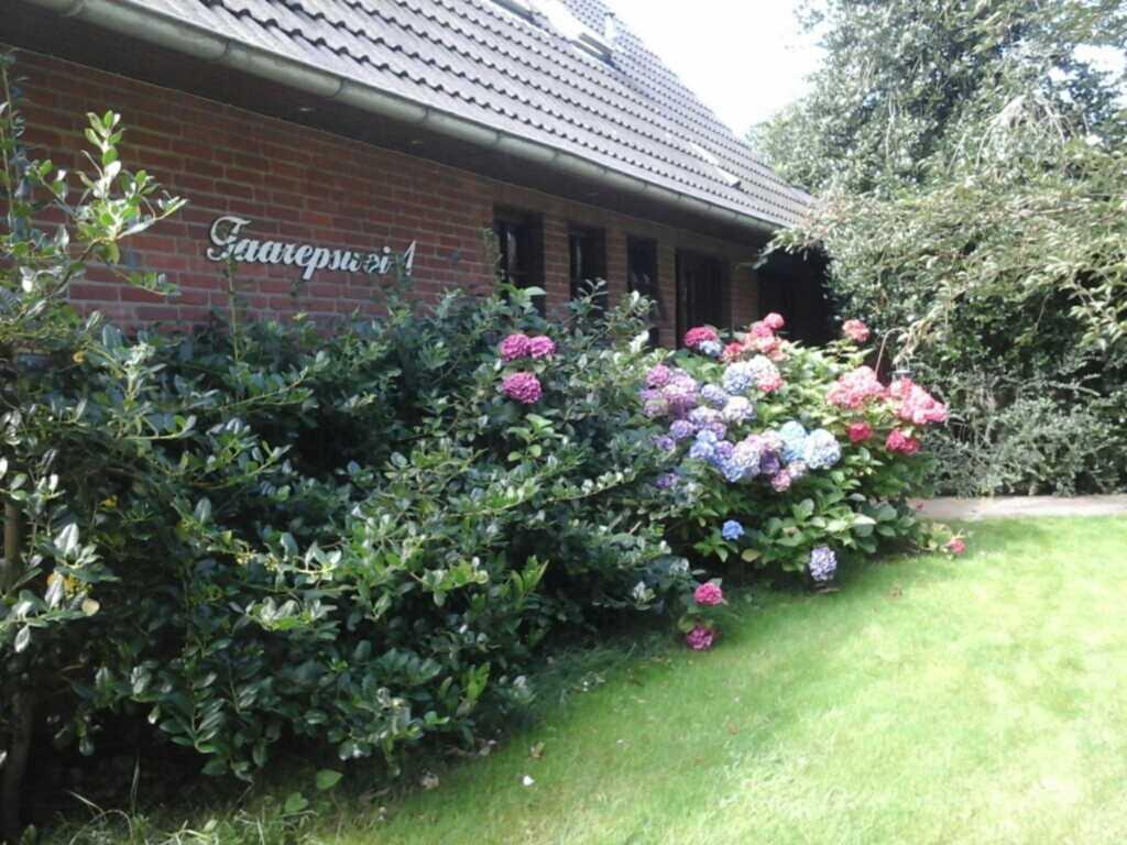 Ferienwohnung in Borgsum (oben links), 503 Ferienw