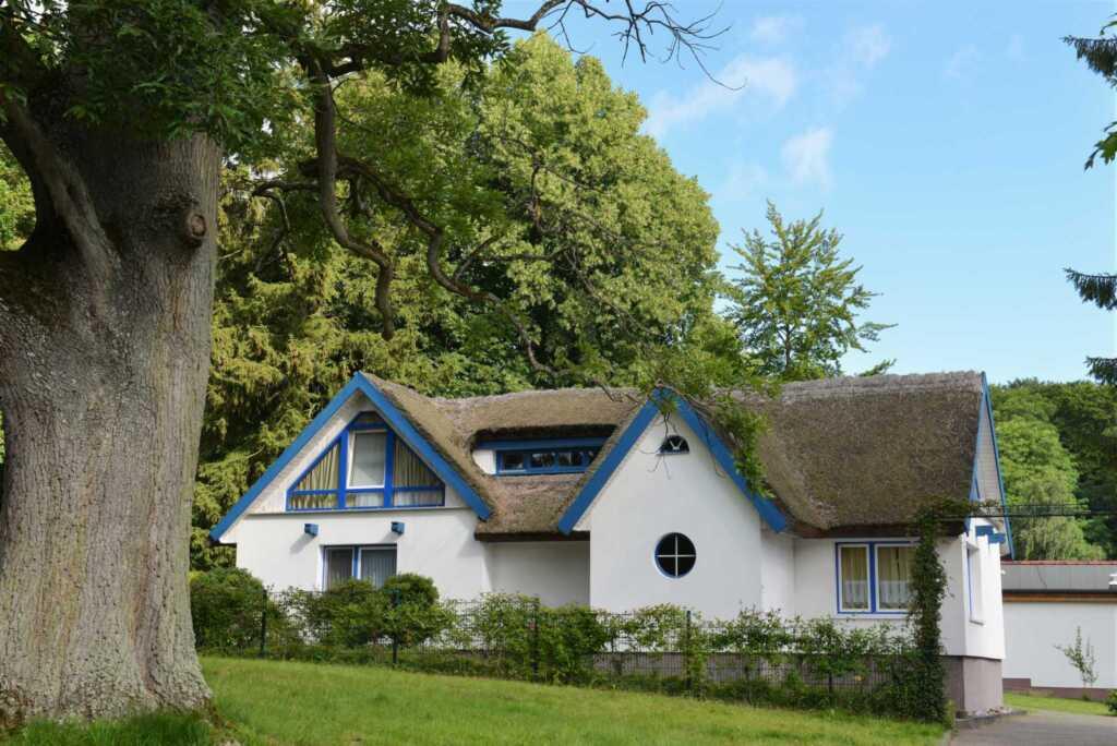 Haus im Park, Haus im Park Fewo 2