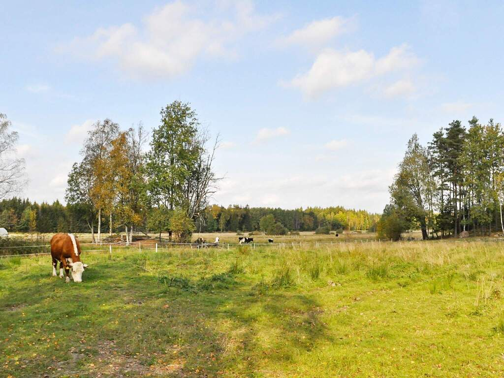 Umgebung von Ferienhaus No. 78241 in Frändefors