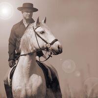 Vermieter: Henning Fröhlich als spanischer Reiter