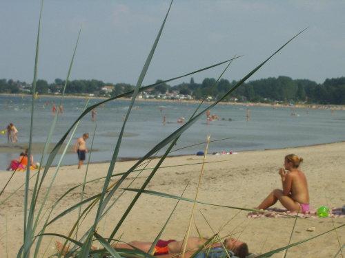 Strand an der Wohlenberger Wiek