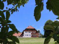 Budererhof, Ferienwohnung 84m² in Freiamt - kleines Detailbild