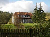 Historisches Forsthaus am Stettiner Haff, Oberförsterei am Fluss in Stepnica - kleines Detailbild