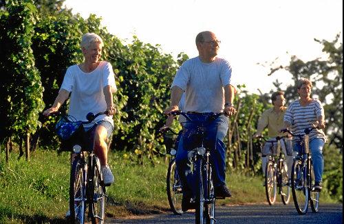 Radtour durch die Weinreben