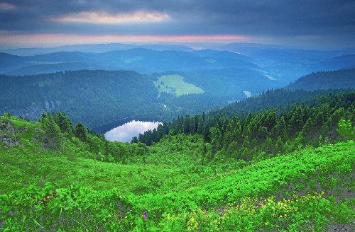 Wanderungen im Schwarzwald