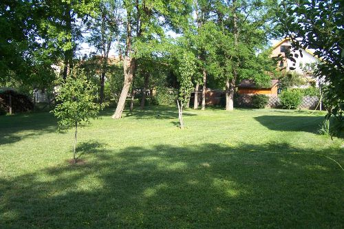 Garten Ostseite