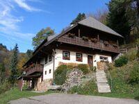 Ferienhaus Rombach, Ferienwohnung C 55qm, 1 Schlafraum, 1 Wohn--Schlafraum, max. 4 Personen , 1 - 4  in Wieden - kleines Detailbild