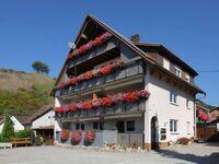 Ferienhaus Ziegler, Ferienwohnung 40qm, 1 Schlafraum, 1 Wohn--Schlafraum, Bad und Balkon max. 3 Pers in Vogtsburg OT Schelingen - kleines Detailbild