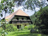 Haus Brigitte - Hintere Mühle, Ferienwohnung 40qm Blumenwiese*** in Horben - kleines Detailbild