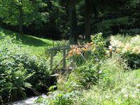 Haus Brigitte - Hintere Mühle, Ferienwohnung 68qm Bergluft***** in Horben - kleines Detailbild