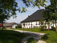 Feichtinger, Ferienwohnung 1 für 2-5 Personen in Steinbach am Attersee - kleines Detailbild