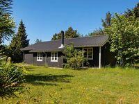 Ferienhaus in Skjern, Haus Nr. 94155 in Skjern - kleines Detailbild