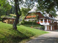 Haus Isele - Große Wohnung in Feldberg - kleines Detailbild