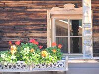 Bauernhaus Korum und Zirbenhäusl Korum, Bauernhaus Korum in Fügen - kleines Detailbild