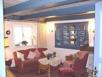 Blaue Stranddistel Teegelii Hof, Ti-Strandd Blaue Stranddistel Teegelii Hof in Sylt-Westerland - kleines Detailbild