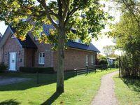 Ferienwohnung Langhoff - Wohnung 2 in Burg auf Fehmarn - kleines Detailbild