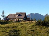 Lenzbauerhütte Tauplitzalm, Almhütte in Tauplitz - kleines Detailbild