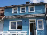 Haushimmelblau in Sankt Andreasberg - kleines Detailbild