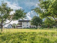 MI-Ferienwohnung Pamale, Ferienwohnung Pamale in Michelstadt-Vielbrunn - kleines Detailbild