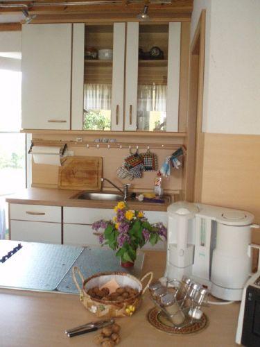Kochbereich mit Zugang zur Terasse