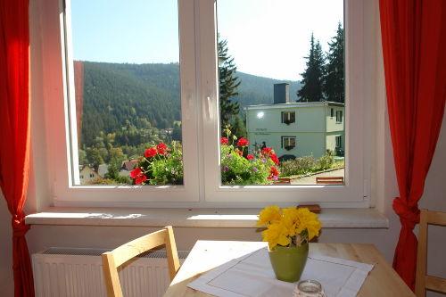 Blick aus einem Ferienhaus