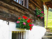 Ferienhaus Obereggenburg, Ferienhaus Obereggenburg 1 in Stans - kleines Detailbild