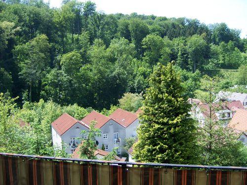 Ausblick von Terrasse auf den Exotenwald