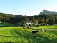 Pension und Camping Alpenwelt, Ferienwohnung 6 in Tannheim - kleines Detailbild
