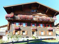 Haus Peintner, Ferienwohnung 1 in Tannheim - kleines Detailbild