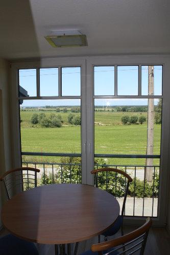 Blick aus der Küche auf die Ostsee
