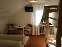 Hotel Restaurant Feldbergpass (Hotel), 5-Bett Zimmer mit Dusche-WC auf der Etage in Feldberg - kleines Detailbild