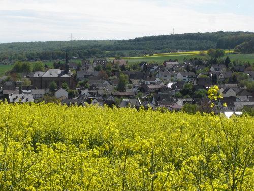 Ansicht vom sch�nen Rosendorf L�hndorf.