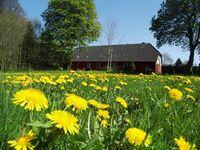 Ferien auf dem kleinen Bauernhof in Ahrenshagen-Daskow OT Tribohm - kleines Detailbild