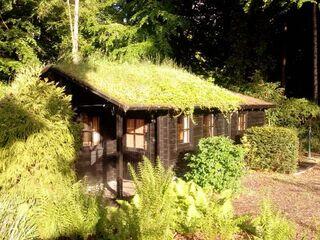 Haus F�rdeidyll in Heikendorf - Deutschland - kleines Detailbild