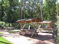 """Zempin Ostseepark WE 19 **Insel Usedom**150m zum Strand**, Zempin Ostseepark WE 19 """"Wanderdüne"""" in Zempin (Seebad) - kleines Detailbild"""