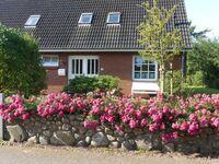 Mariannes Hüs Wohnung 1, Mariannes Hüs in Borgsum - kleines Detailbild