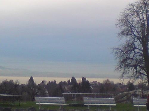 Aussicht auf den See von der Liegewiese