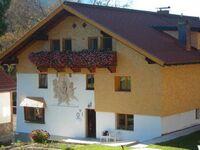 Haus Maringele, Ferienwohnung 3 in Nesselwängle - kleines Detailbild
