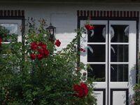 Susanne Filter und Florian Luchow, FW Geltinger Bucht in Pommerby - kleines Detailbild