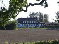 Gästehaus Frank, Ferienwohnung Südterrasse in Gelting - kleines Detailbild