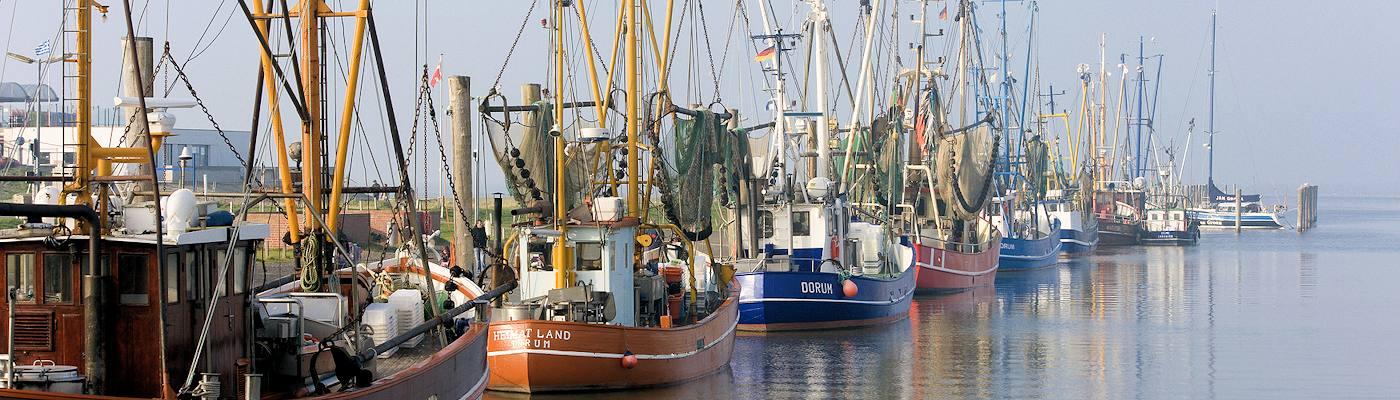 cuxhaven und umgebung hafen kutter nordsee