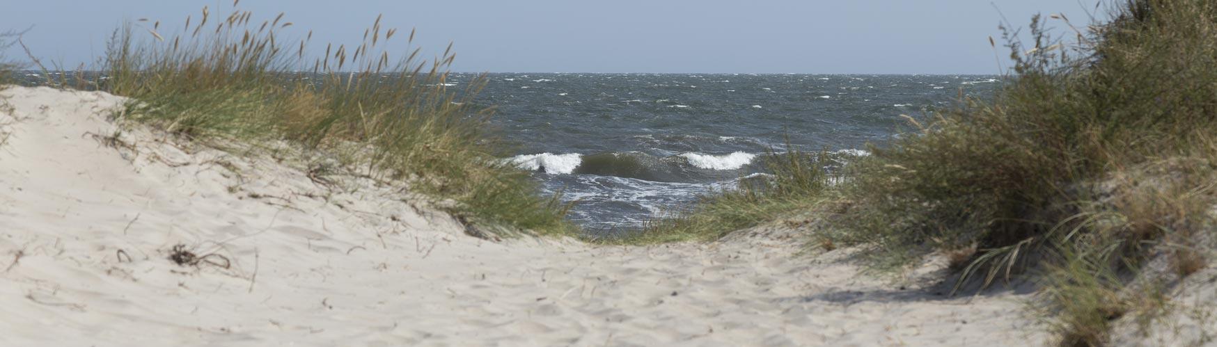 fjellerup strand ostjuetland daenemark strand