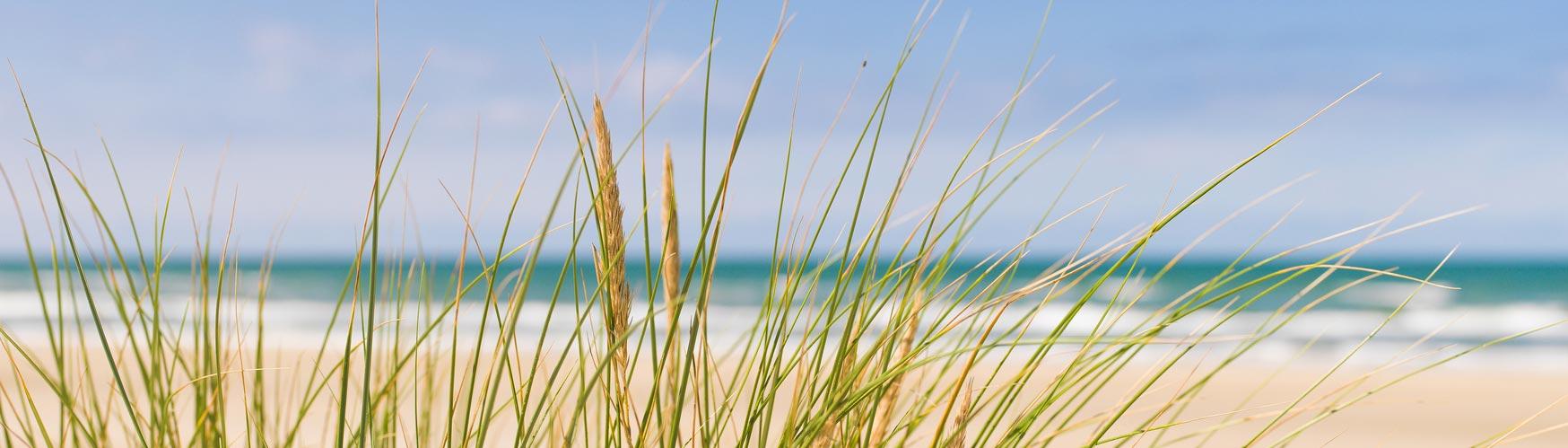 marielyst falster ostsee daenemark strand