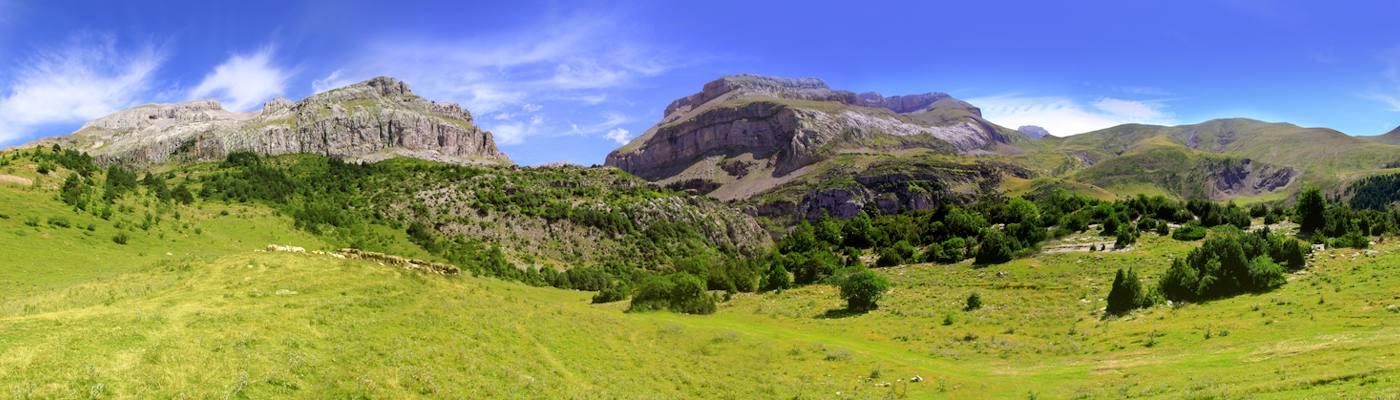 pyrenees orientales berge wiese frankreich